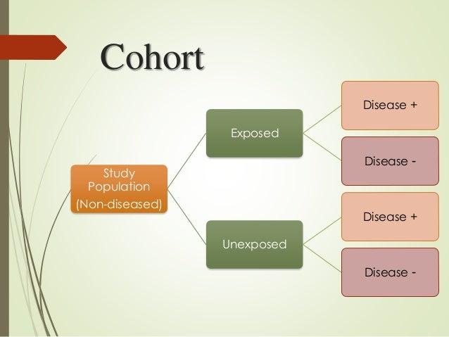 cohort - English-Spanish Dictionary - WordReference.com