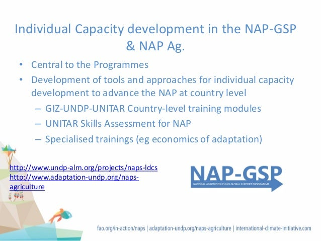 Individual Capacity development in the NAP-GSP & NAP Ag. • Central to the Programmes • Development of tools and approaches...