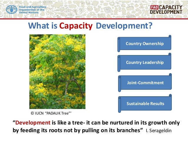 """What is Development? """"Development is like a tree- it can be nurtured in its growth only by feeding its roots not by pullin..."""