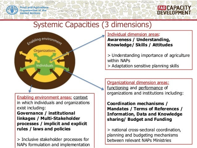 Systemic Capacities (3 dimensions) Individual dimension areas: Awareness / Understanding, Knowledge/ Skills / Attitudes > ...