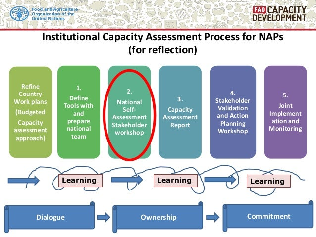 Institutional Capacity Assessment Process for NAPs (for reflection) CommitmentOwnershipDialogue Refine Country Work plans ...