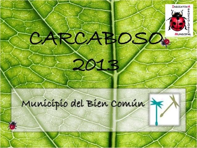 CARCABOSO 2013 Municipio del Bien Común