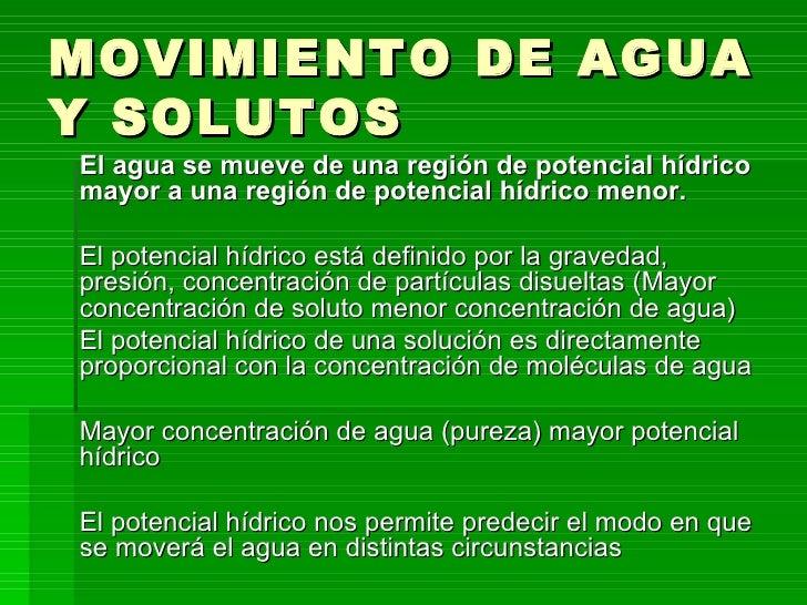 Hermosa Uñas De Agua En Movimiento Elaboración - Ideas Para Esmaltes ...