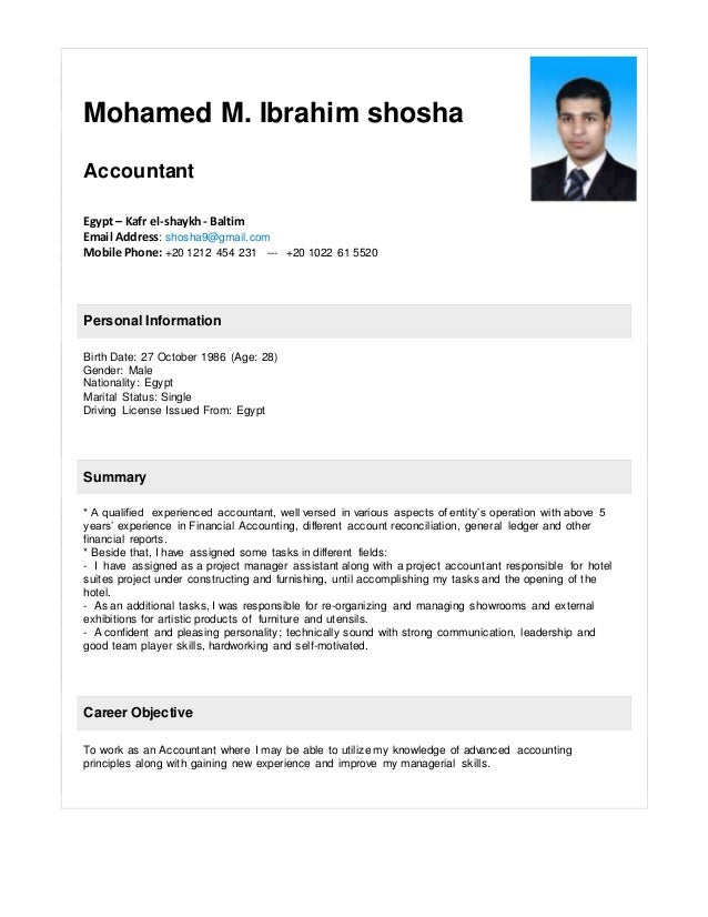 Mohamed Shosha  Accountant Resume