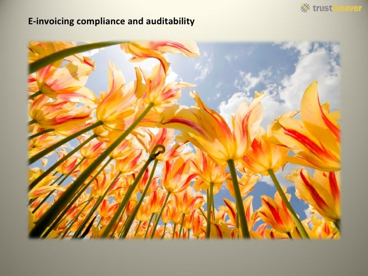 E-invoicing compliance and auditability