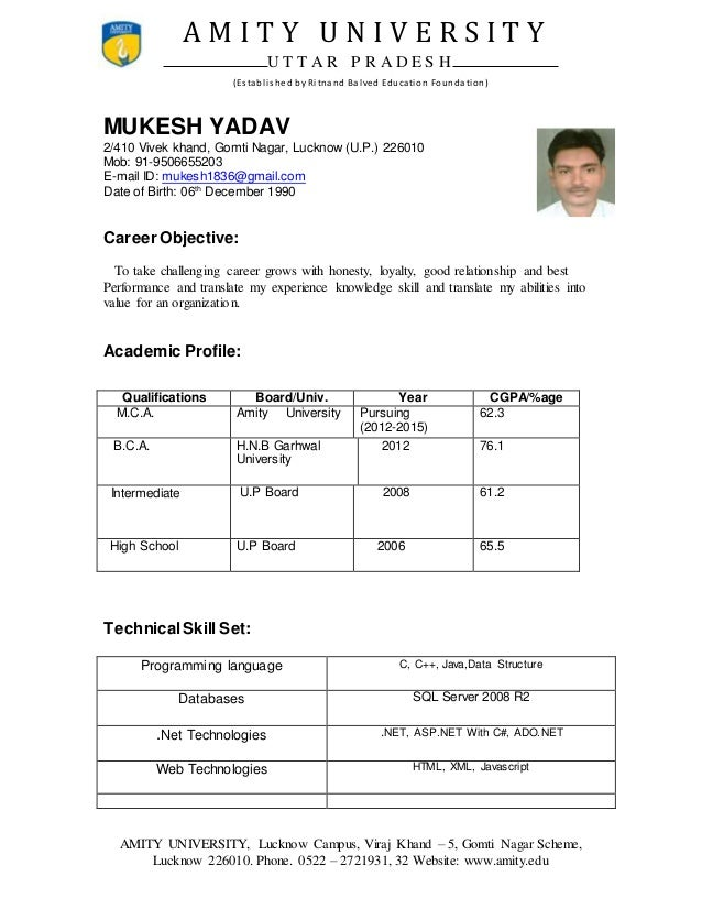 mca resume  mukesh