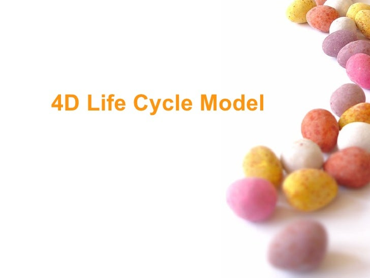 4D Life Cycle Model