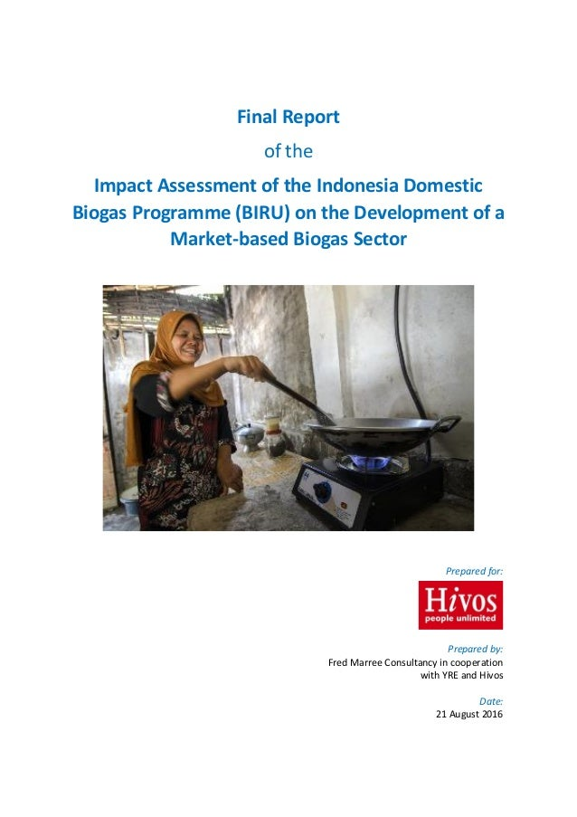 Report of the Impact Assessment of the Indonesia Domestic