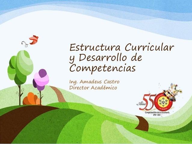Estructura Curricular y Desarrollo de Competencias Ing. Amadeus Castro Director Académico