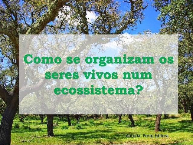 Como se organizam os  seres vivos num  ecossistema?  Autoria: Porto Editora