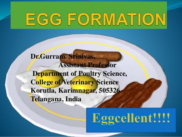 Eggcellent!!!! Dr.Gurram. Srinivas, Assistant Professor Department of Poultry Science, College of Veterinary Science Korut...