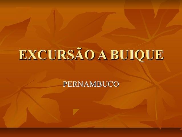 EXCURSÃO A BUIQUEEXCURSÃO A BUIQUEPERNAMBUCOPERNAMBUCO