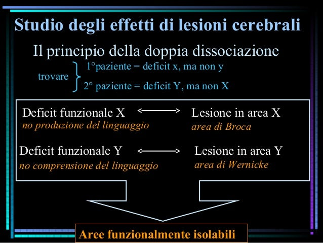 Studio degli effetti di lesioni cerebrali Il principio della doppia dissociazione 1°paziente = deficit x, ma non y 2° pazi...