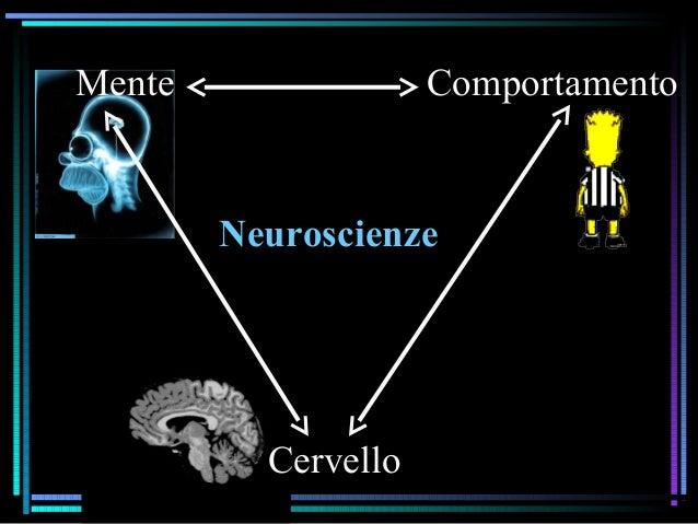 Neuroscienze Mente Comportamento Cervello