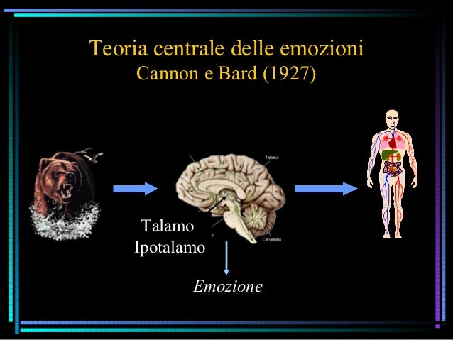 Teoria centrale delle emozioni Cannon e Bard (1927) Talamo Ipotalamo Emozione