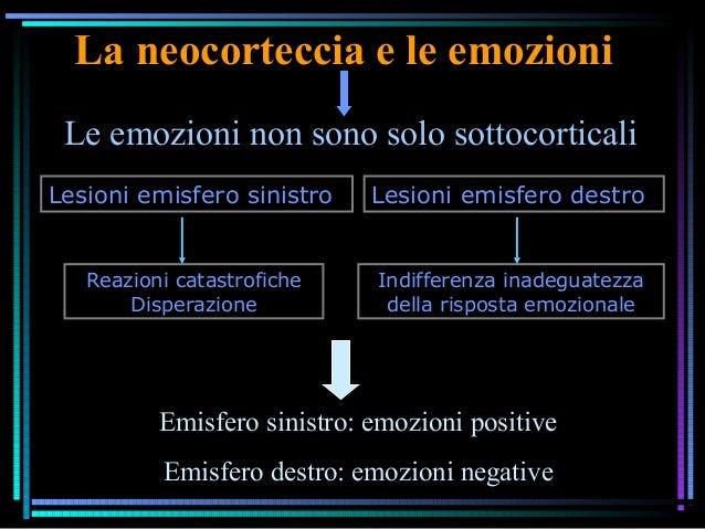 La neocorteccia e le emozioni Le emozioni non sono solo sottocorticali Lesioni emisfero sinistro Lesioni emisfero destro R...