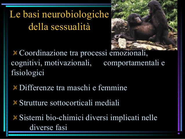 Le basi neurobiologiche della sessualità Coordinazione tra processi emozionali, cognitivi, motivazionali, comportamentali ...