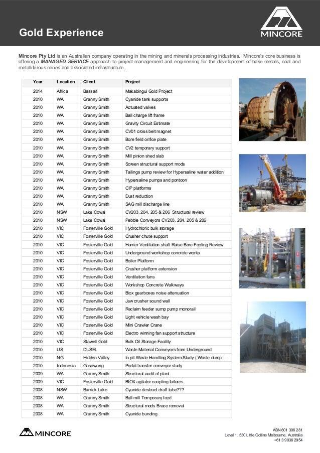 Mincore Capability And Experience Profile