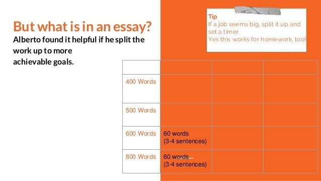 800 words essay