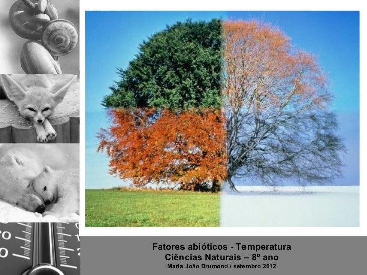 Fatores abióticos - Temperatura   Ciências Naturais – 8º ano   Maria João Drumond / setembro 2012