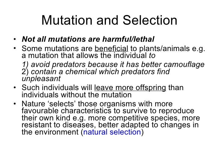 Does gene flow spread advantageous mutations?