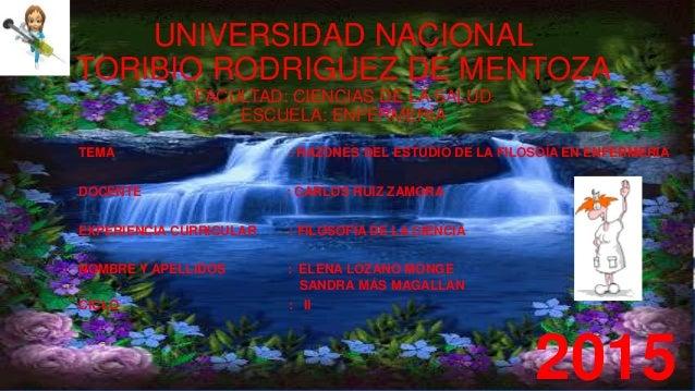 UNIVERSIDAD NACIONAL TORIBIO RODRIGUEZ DE MENTOZA FACULTAD: CIENCIAS DE LA SALUD ESCUELA: ENFERMERÍA TEMA : RAZONES DEL ES...