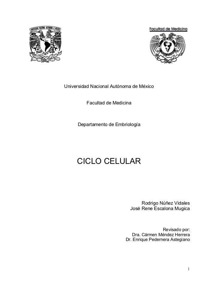 Universidad Nacional Autónoma de México         Facultad de Medicina     Departamento de Embriología     CICLO CELULAR    ...