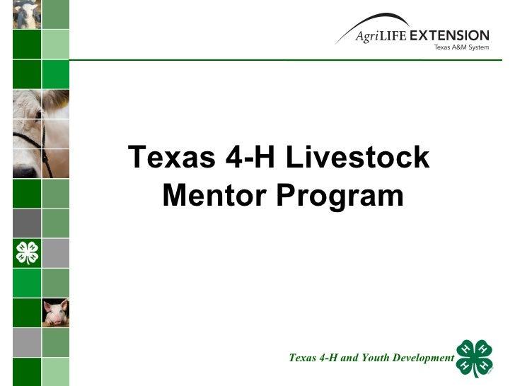 Texas 4-H Livestock  Mentor Program Texas 4-H and Youth Development