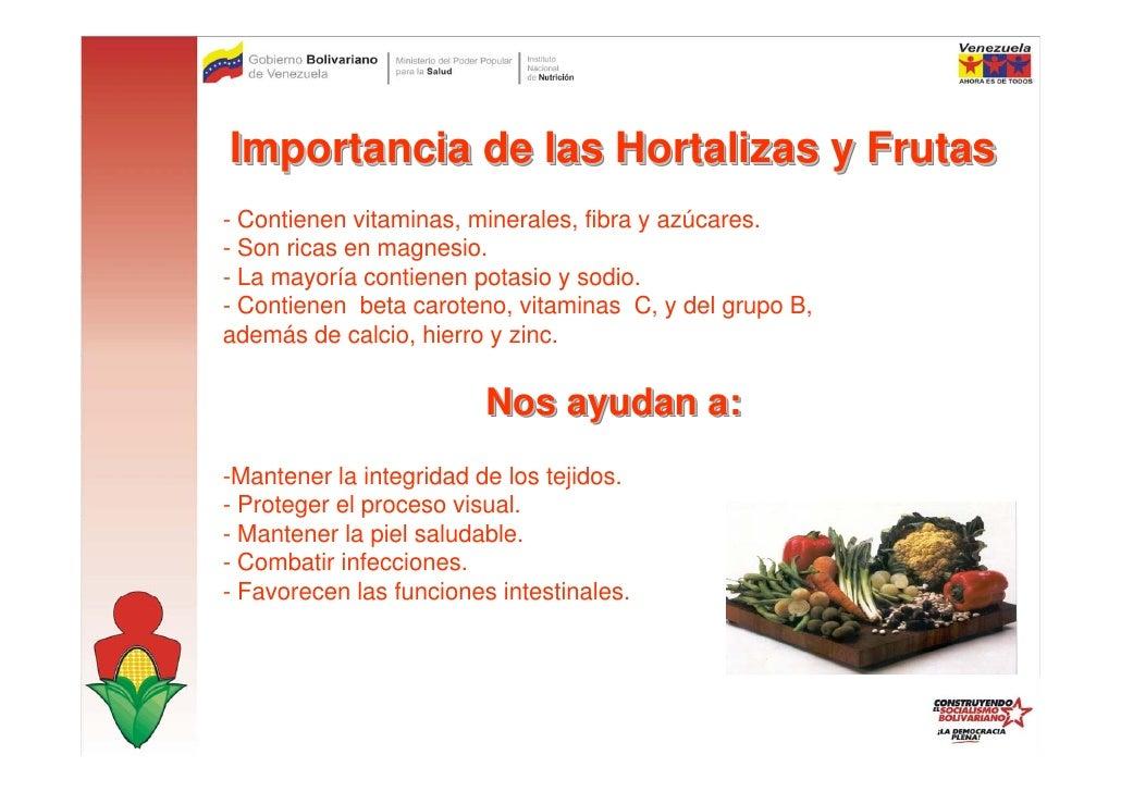 Hortalizas for Importancia de los viveros forestales