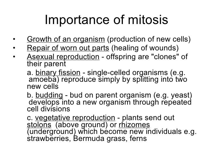 importance of cell division test notes Cellular the objective is to study the importance of cellular division and  unit plan reproduction, grade 9 science  cell cycle and cell division notes.