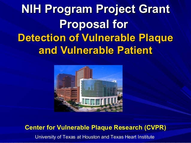 NIH Program Project GrantNIH Program Project Grant Proposal forProposal for Detection of Vulnerable PlaqueDetection of Vul...