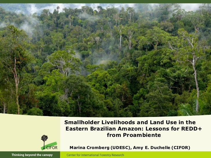 Smallholder Livelihoods and Land Use in theEastern Brazilian Amazon: Lessons for REDD+              from Proambiente Marin...