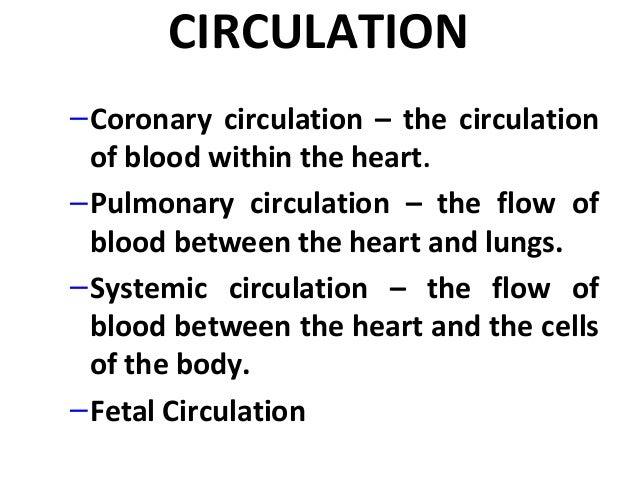 ppt on human circulatory system