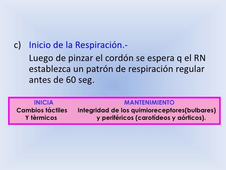 Inicio de la Respiración.- <br />Luego de pinzar el cordón se espera q el RN establezca un patrón de respiración regular ...