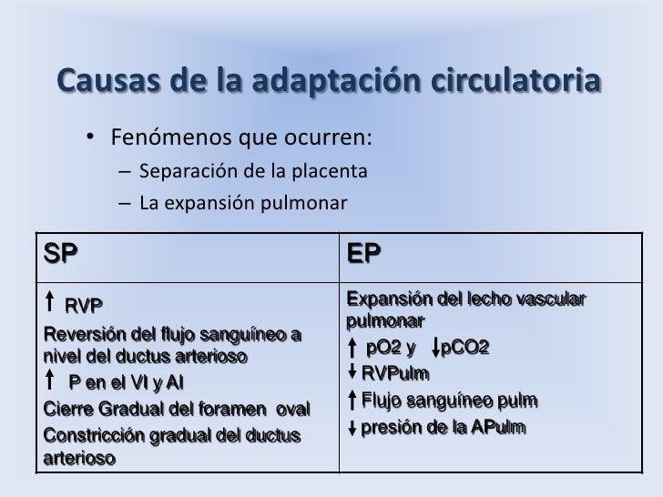 Causas de la adaptación circulatoria<br />Fenómenos que ocurren:<br />Separación de la placenta<br />La expansión pulmonar...