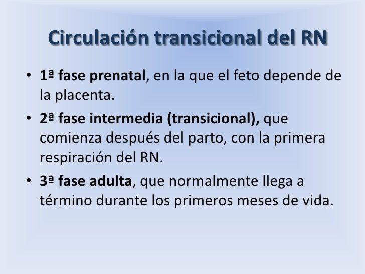 Circulación transicional del RN<br />1ª fase prenatal, en la que el feto depende de la placenta.<br />2ª fase intermedia (...