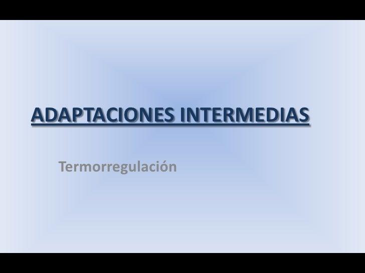 ADAPTACIONES INTERMEDIAS<br />Termorregulación<br />