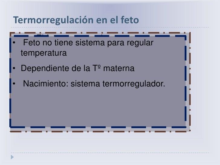 Termorregulación en el feto<br />          El feto genera calor <br /><ul><li> Proliferación y diferenciación celular