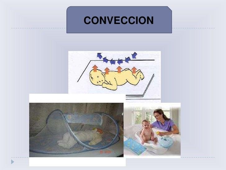 RNPT después del Nacimiento<br />Prenatal<br />Post natal<br />Tº <br />central<br />37<br />Neutralidad Térmica<br />Poiq...