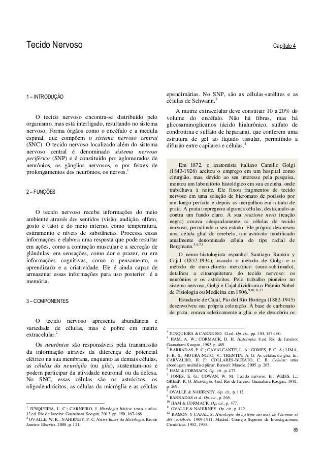 85 Tecido Nervoso Capítulo 4 1 – INTRODUÇÃO O tecido nervoso encontra-se distribuído pelo organismo, mas está interligado,...