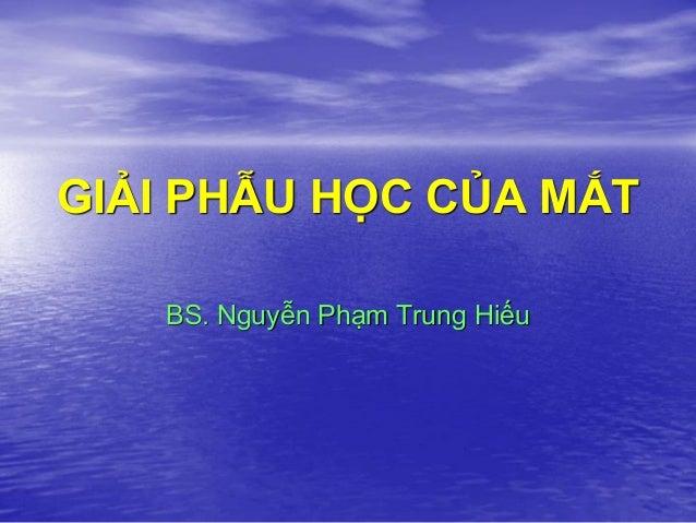 GIẢI PHẪU HỌC CỦA MẮT BS. Nguyễn Phạm Trung Hiếu