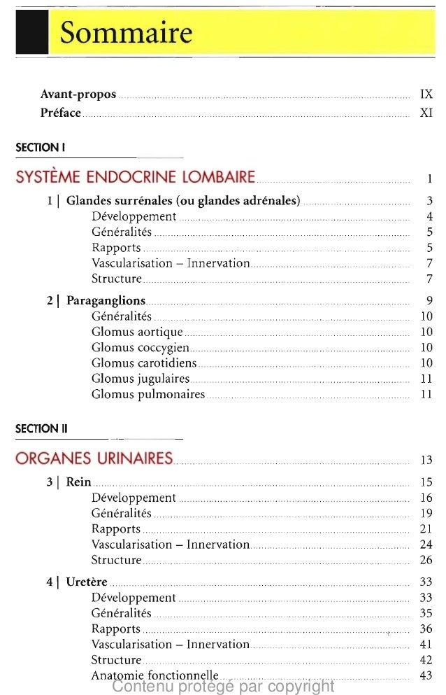 I  Sommaire  Avant-propos Preface  IX  XI   . .  SECTION I  SYSTEME ENDOCRINE LOMBAIRE 1  1  I Glandes surrenales (ou glan...