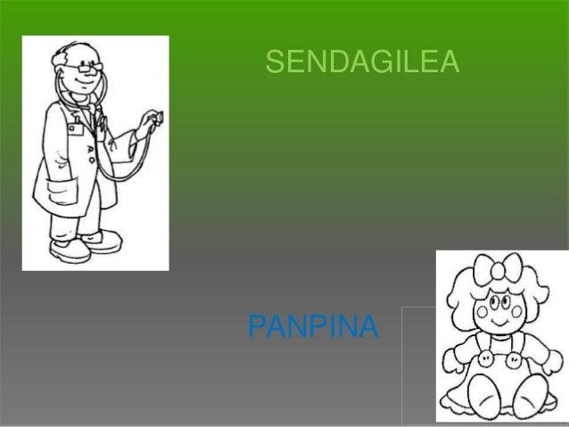 SENDAGILEA  PANPINA