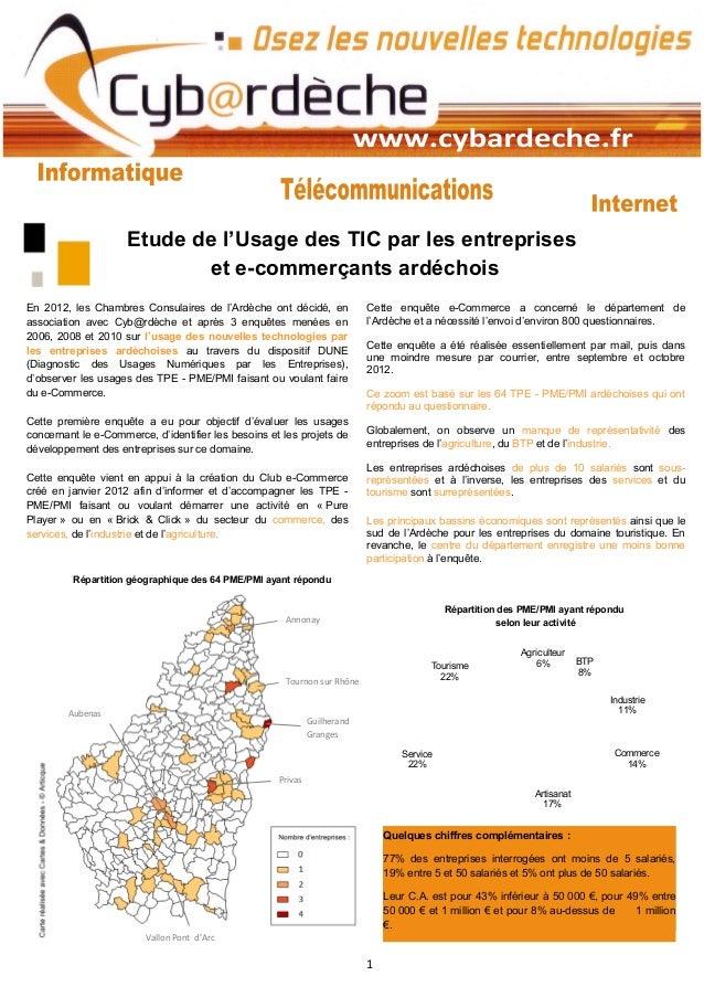Etude de l'Usage des TIC par les entreprises                            et e-commerçants ardéchoisEn 2012, les Chambres Co...