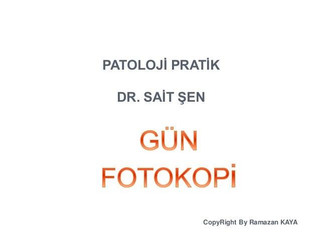 PATOLOJİ PRATİK  DR. SAİT ŞEN  CopyRight By Ramazan KAYA