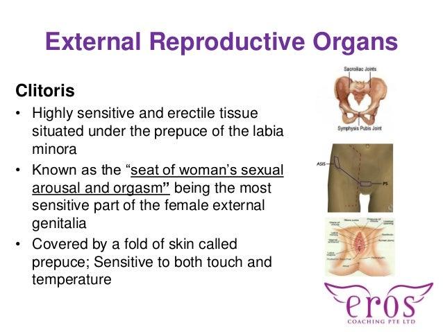 the most sensitive part of the vagina