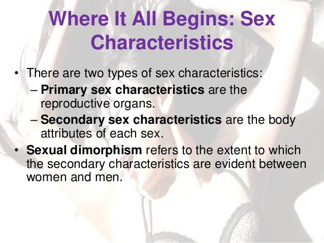List the secondary sexual characteristics in both sexes