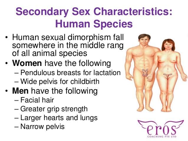 Female sexual intercourse