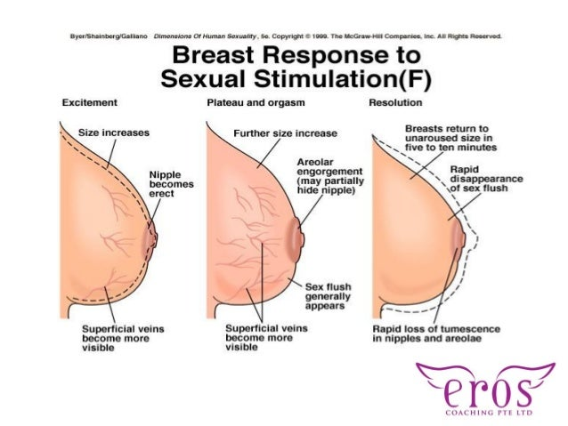 Breast sexuality