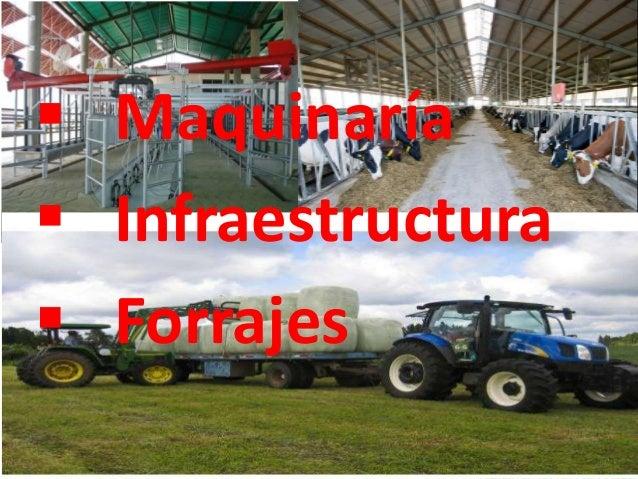  Maquinaría  Infraestructura  Forrajes